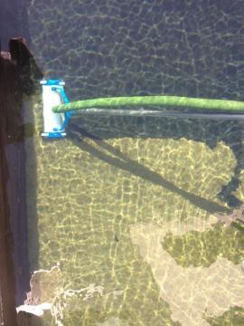 Teichreinigung In Moers Krefeld Essen Duisburg Dusseldorf